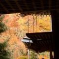 西明寺の紅葉2017年11月 ③
