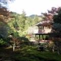 国指定名勝庭園旧竹林院① 2017年11月