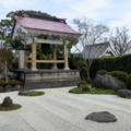 桃源寺と大銀杏