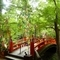 笹飾りと鶯橋