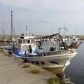 朝の漁港1・2014