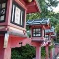 春木弥栄神社2 /輝く何かを追いかける
