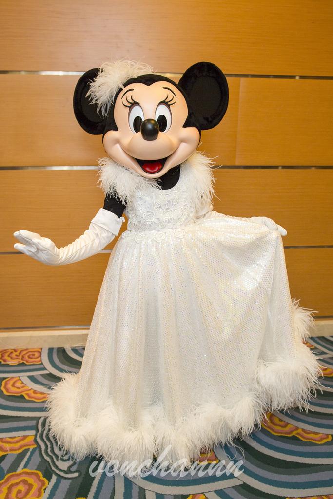 真っ白いふわふわのドレスを身にまとったミニー