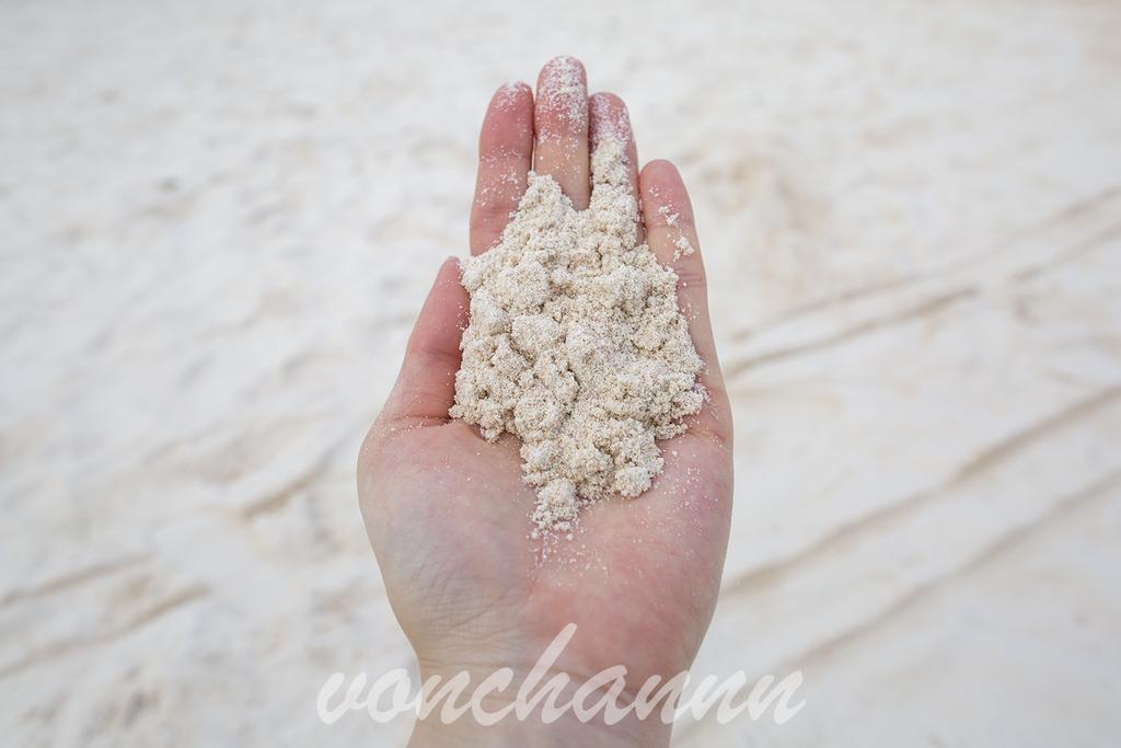 手に取ったhorseshoe bayの砂