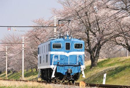 デキ501
