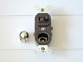Leviton 5213 Pilot Light 内部