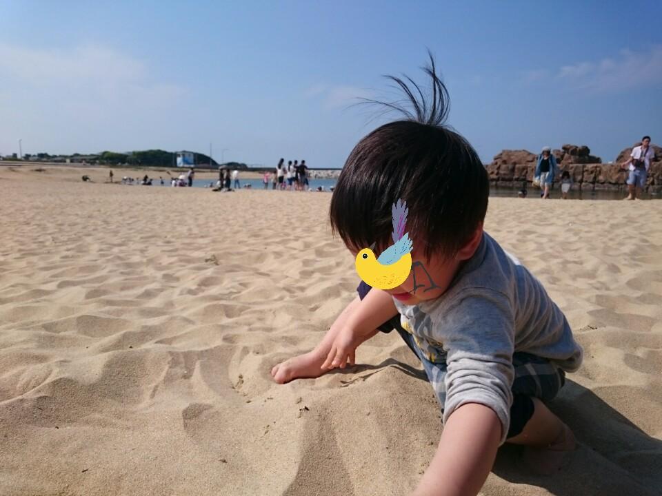 f:id:wa-haha:20170503185200j:image