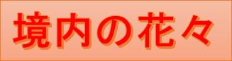 f:id:wa14007:20170419170746p:plain