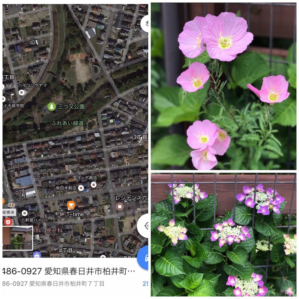 f:id:wa14007:20170602140143j:image