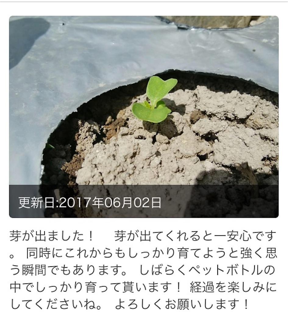 f:id:wa8sa:20170713100646j:image