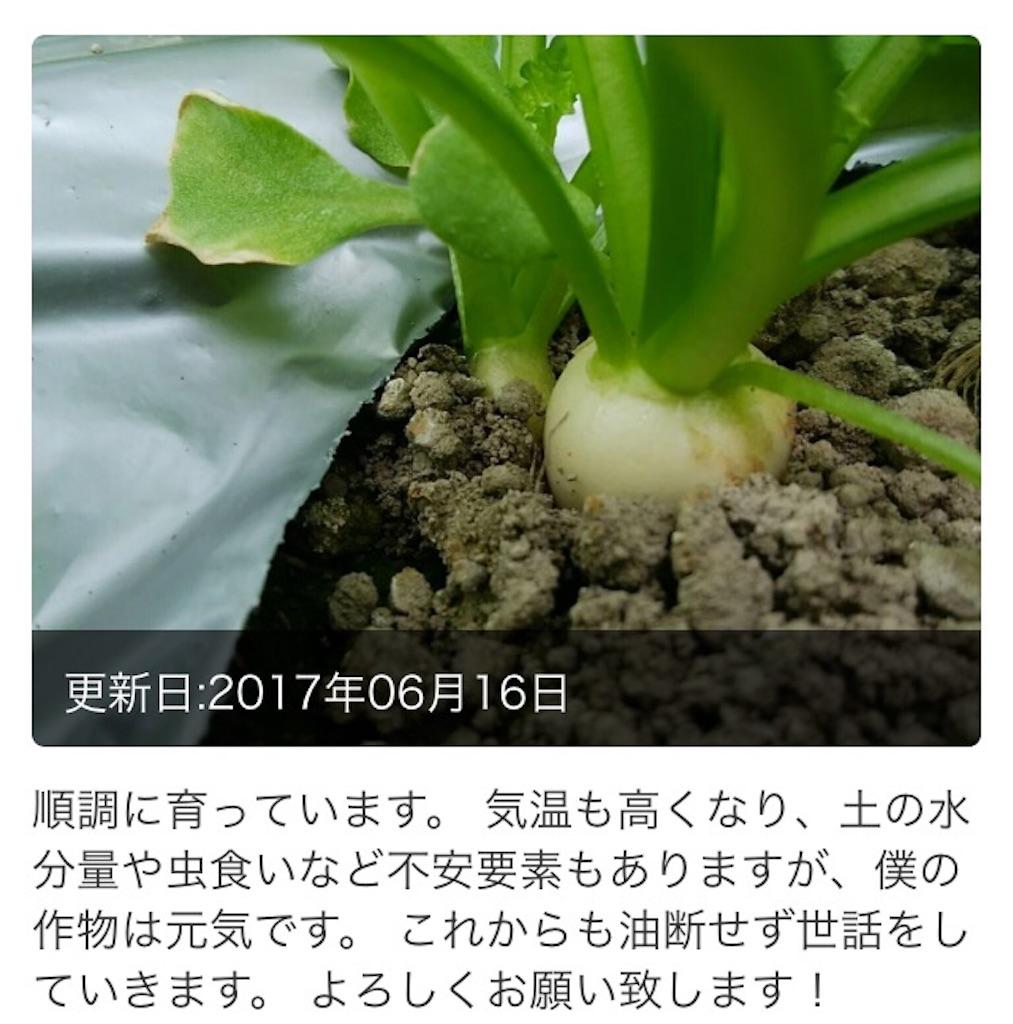f:id:wa8sa:20170713100658j:image