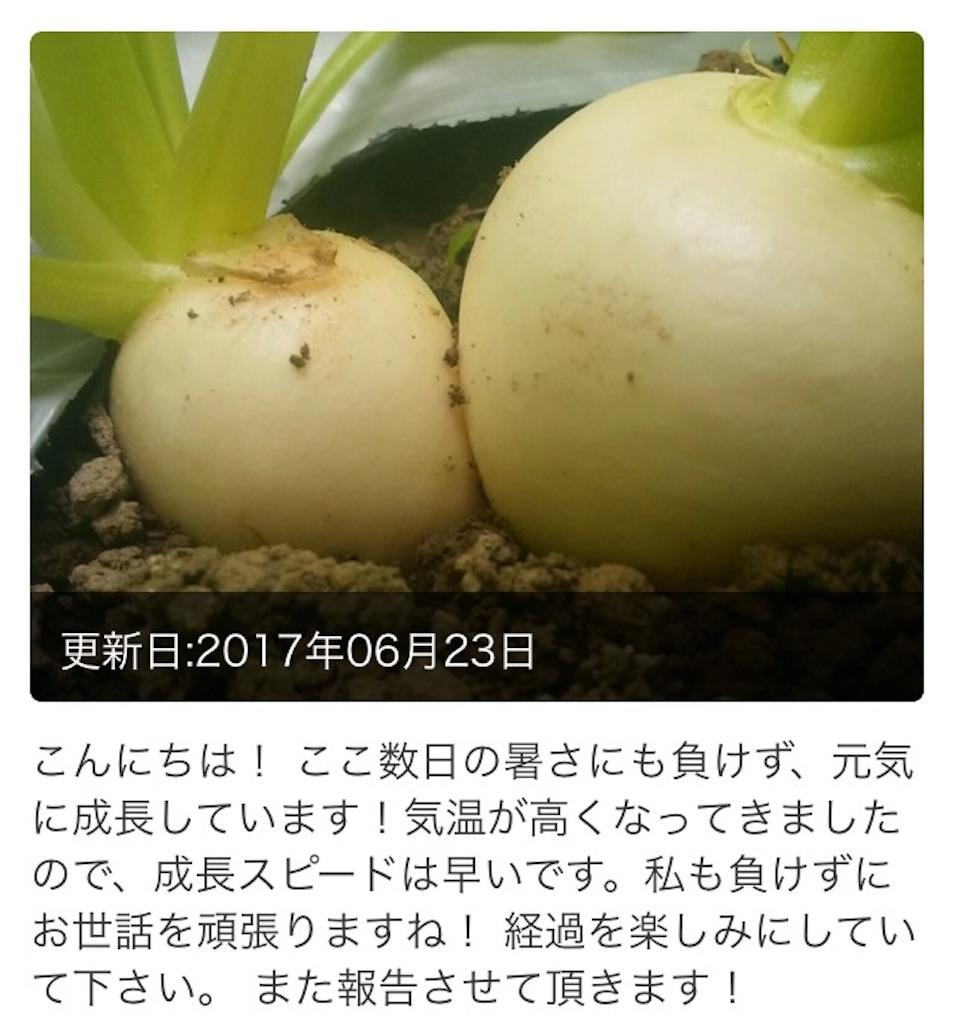 f:id:wa8sa:20170717002341j:image
