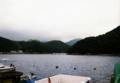 四国の小さな魚港