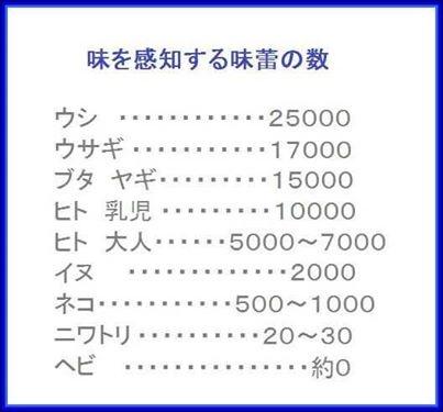 f:id:wacag:20140309193416j:plain