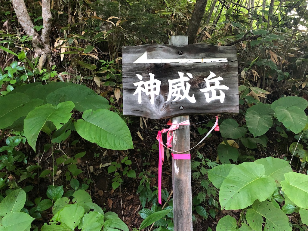 f:id:wachiyo1030:20200710212841j:image