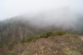 ケルンから上は霧が混んできた