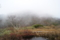 地蔵の池 冬を待つ