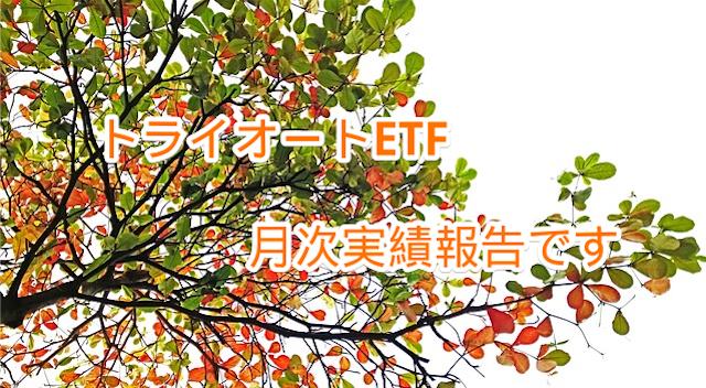 f:id:wacochan:20181115213115p:plain