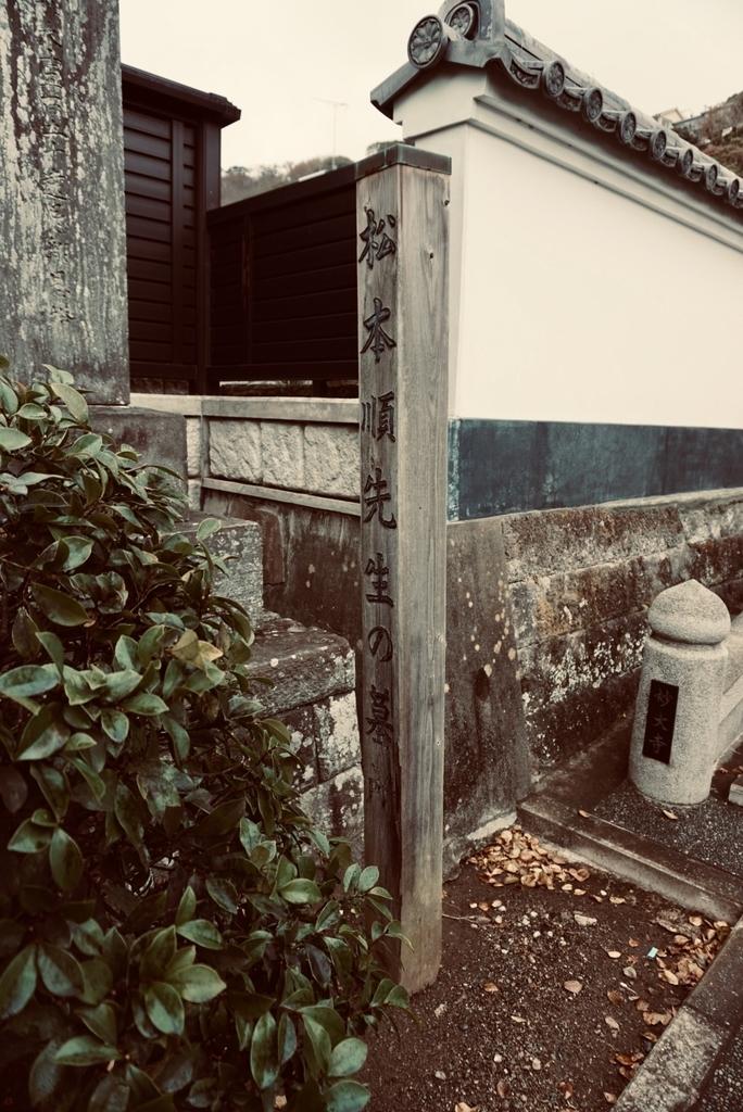 f:id:wadakogorou-weblog:20181228223401j:plain
