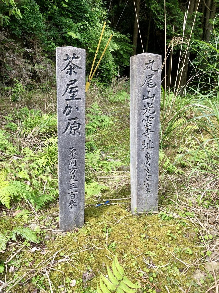 f:id:wadakogorou-weblog:20190612154717j:plain