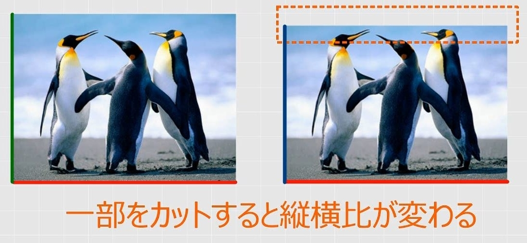 f:id:waenavi:20181018062453j:plain