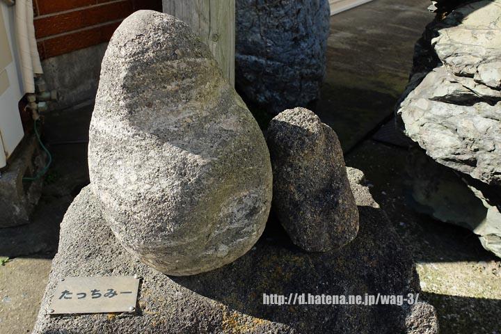 f:id:wag-3:20131125213546j:image:w360