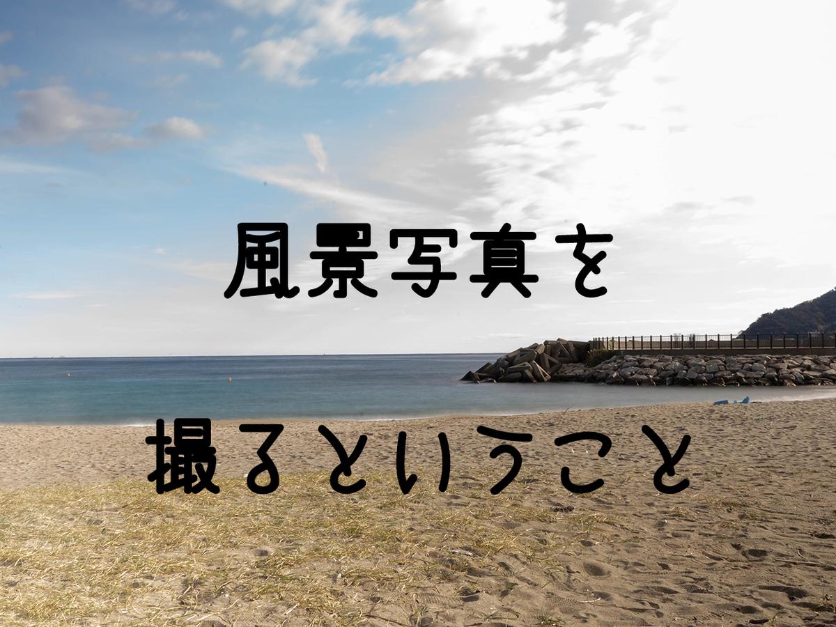 f:id:wagamama110:20200420151548j:plain