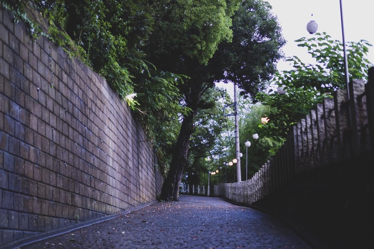 f:id:wagamama110:20200728171258j:plain