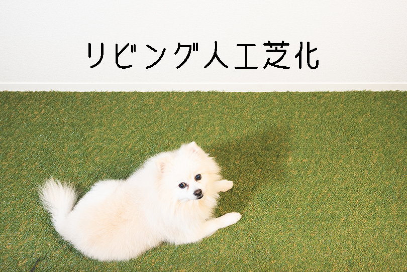 f:id:wagamama110:20200818111148j:plain
