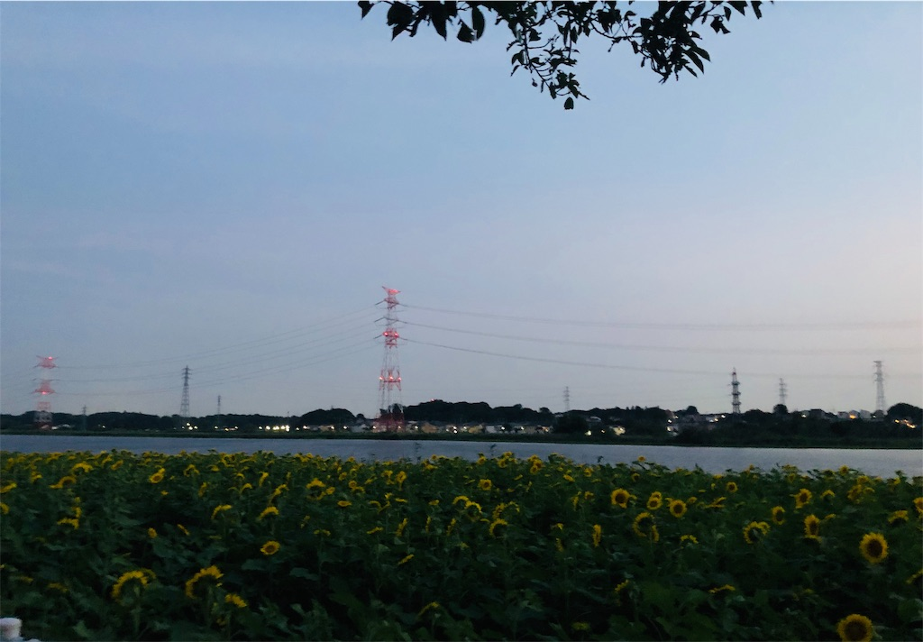 f:id:wagashi-okeya:20190730213024j:image