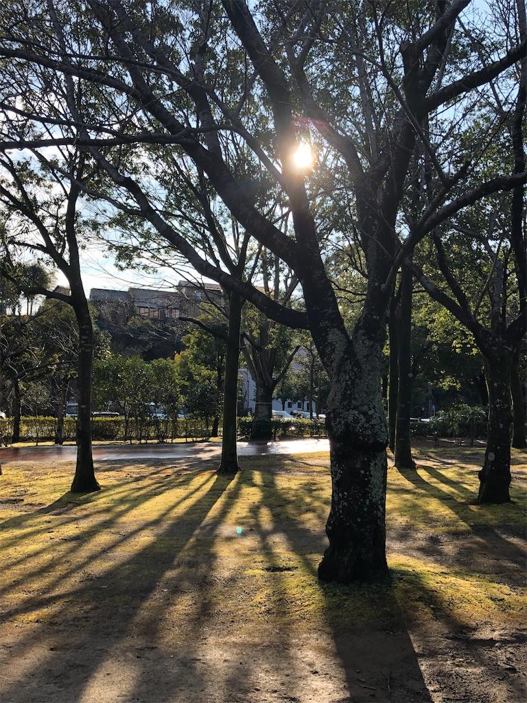 f:id:wagashi-okeya:20200115152057j:image