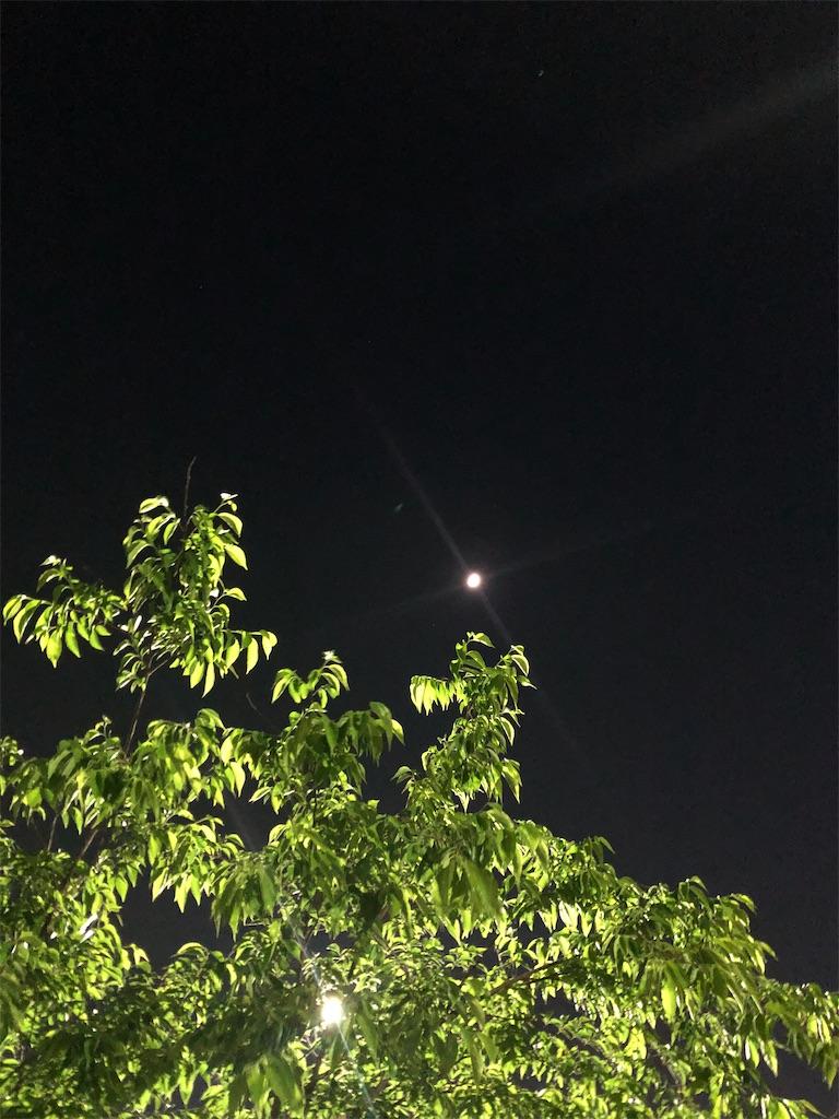 f:id:wagashi-okeya:20200614234424j:image