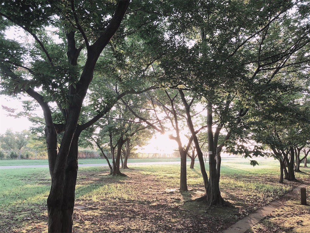 f:id:wagashi-okeya:20200928145318j:image