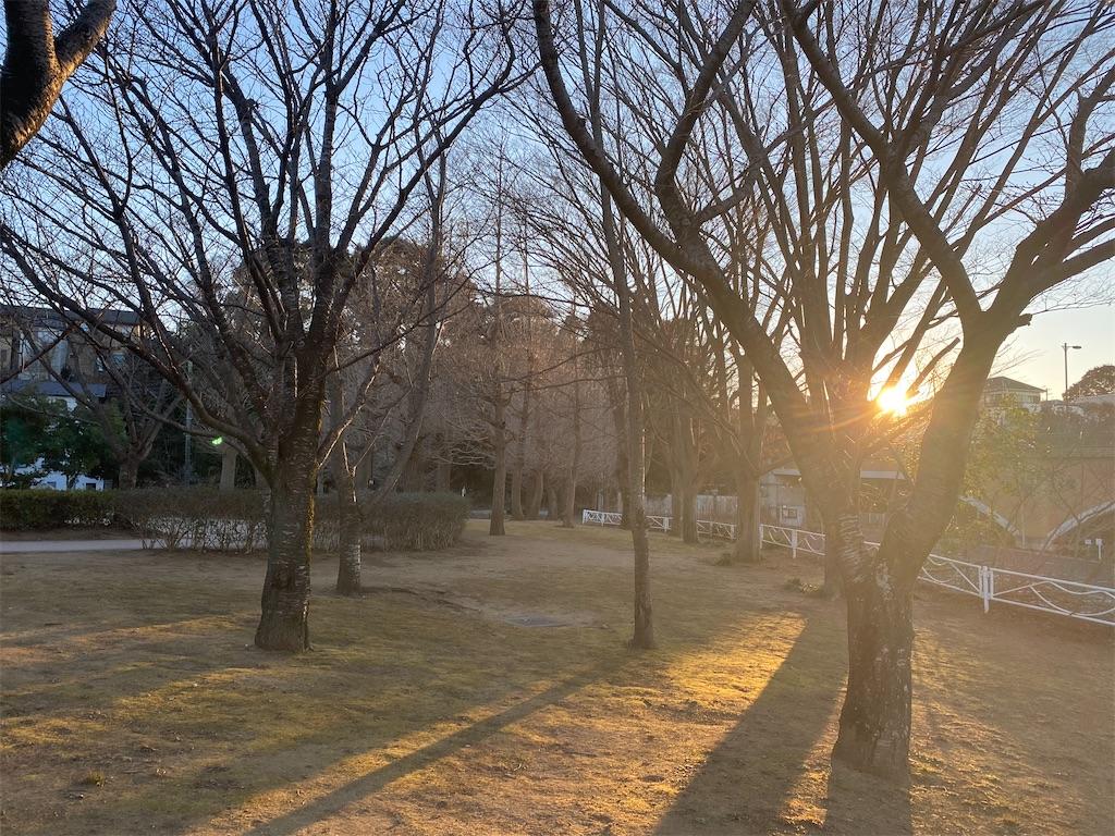 f:id:wagashi-okeya:20210111223932j:image
