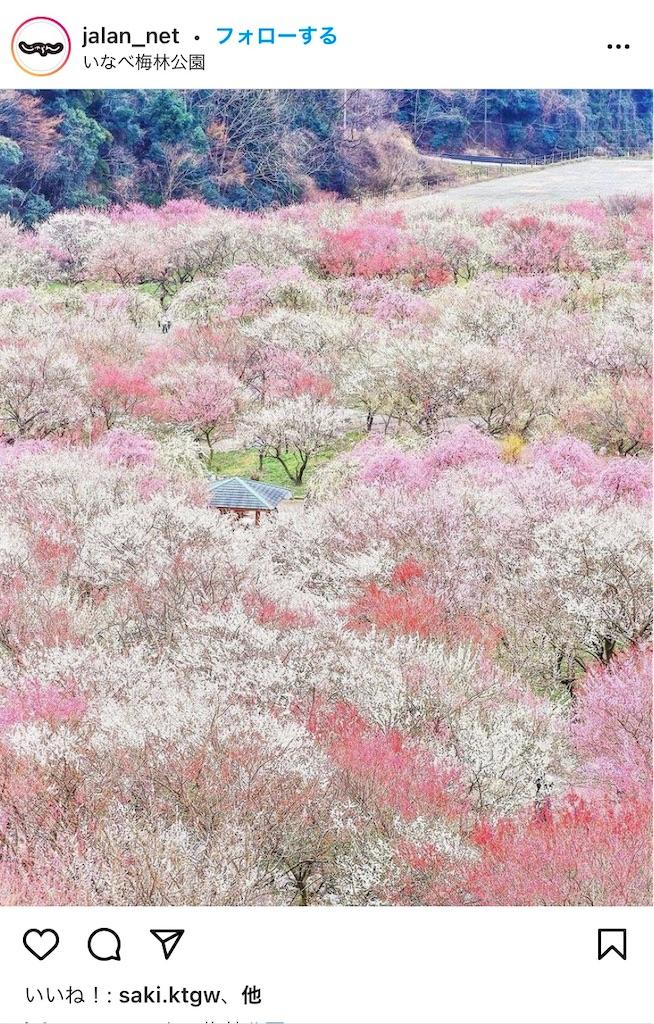 f:id:wagashi-okeya:20210308075321j:image