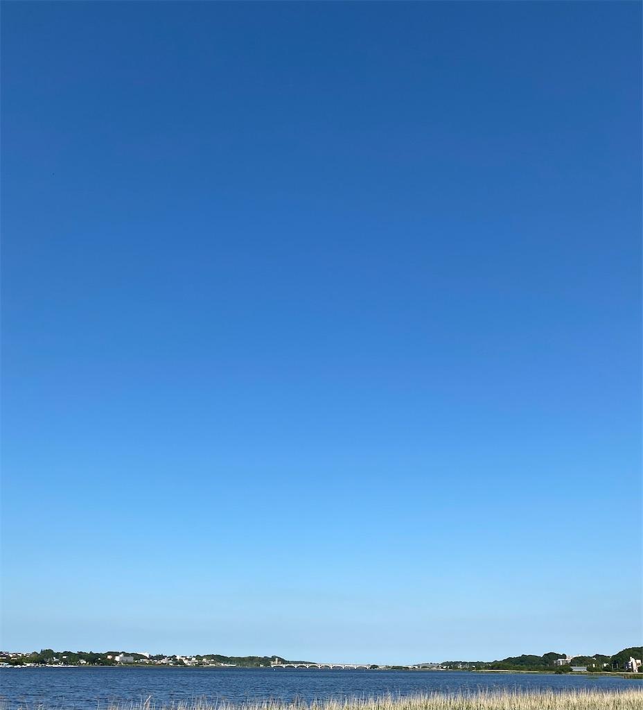 f:id:wagashi-okeya:20210609090447j:image