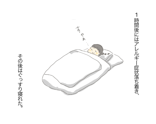 f:id:wahahaihai:20210129224235p:plain