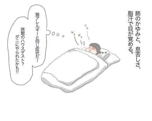 f:id:wahahaihai:20210129230238p:plain