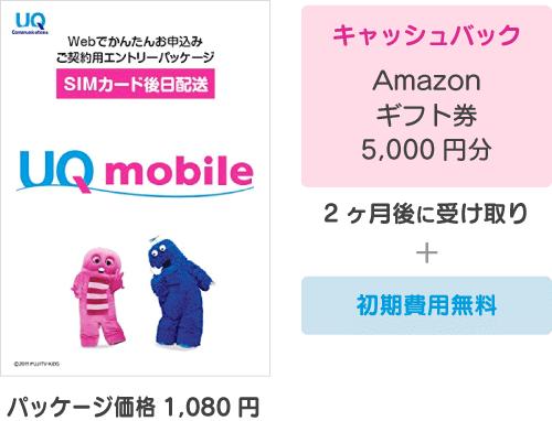 キャッシュバック:Amazonギフト券5,000円分+初期費用無料(パッケージ代1080円)。2ヶ月後に受け取り