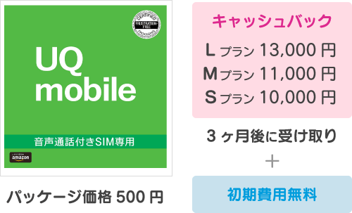 キャッシュバック:10000円〜13000円+初期費用無料(パッケージ代500円)。3ヶ月後に受け取り