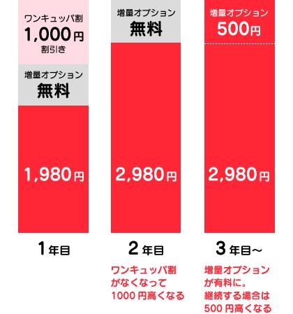 2年目はワンキュッパ割がなくなって千円高く、3年目は増量オプションが有料になって500円高くなる