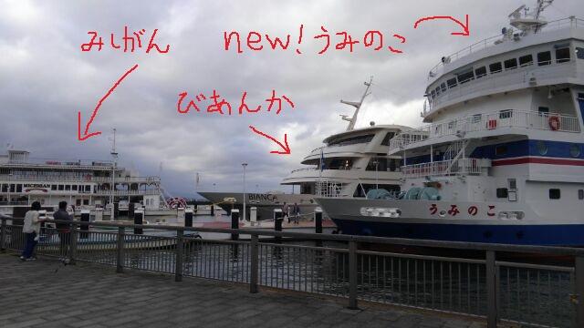 f:id:wakajibi2:20180524142845j:plain