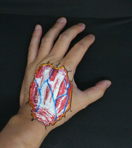 ボディペイント手背解剖図