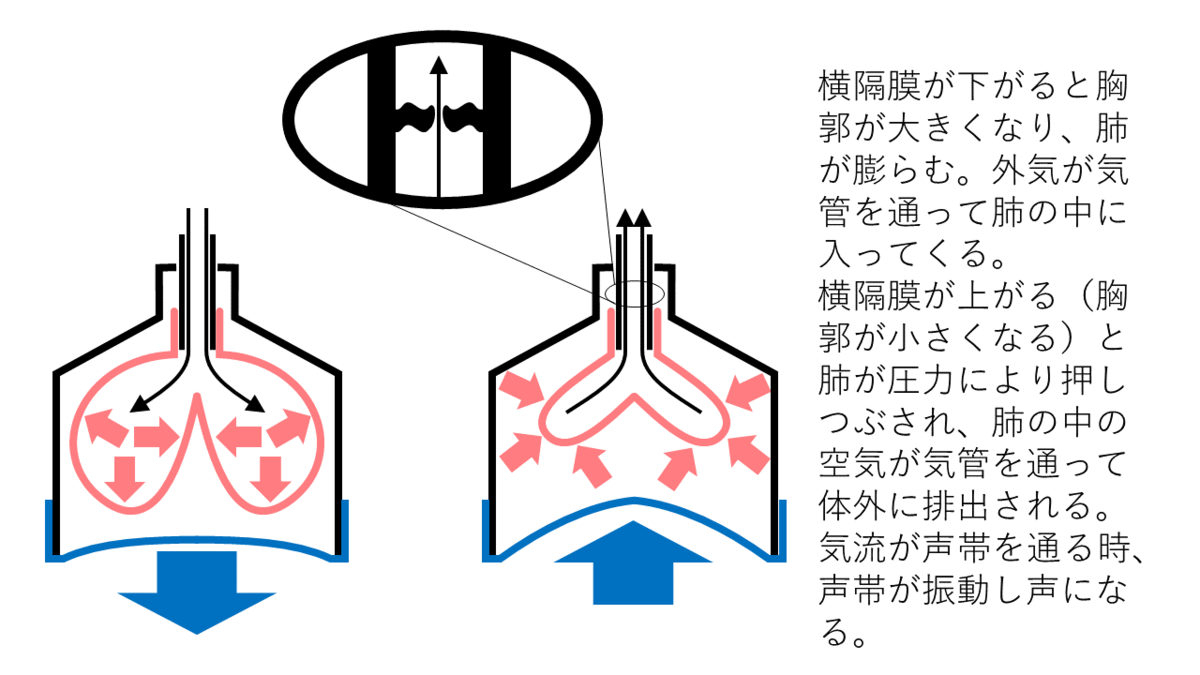 f:id:wakajibi2:20190815171228p:plain