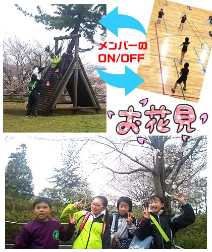 f:id:wakakusa-jr-b-c:20170408203246p:plain
