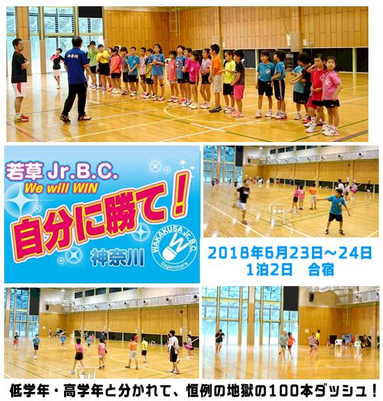 f:id:wakakusa-jr-b-c:20180623185737p:plain