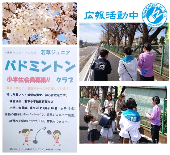 f:id:wakakusa-jr-b-c:20190406074852p:plain