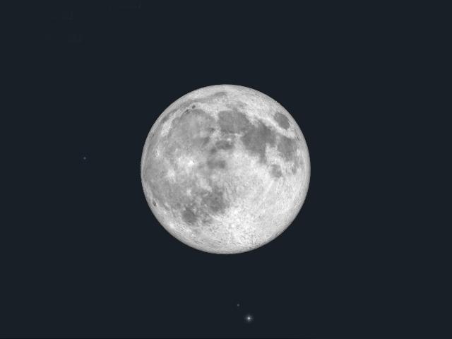 f:id:wakamecore:20190217231617p:plain