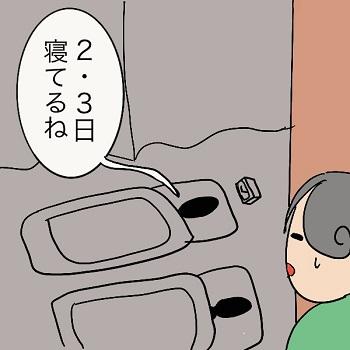 f:id:wakameobasan:20210519185729j:plain
