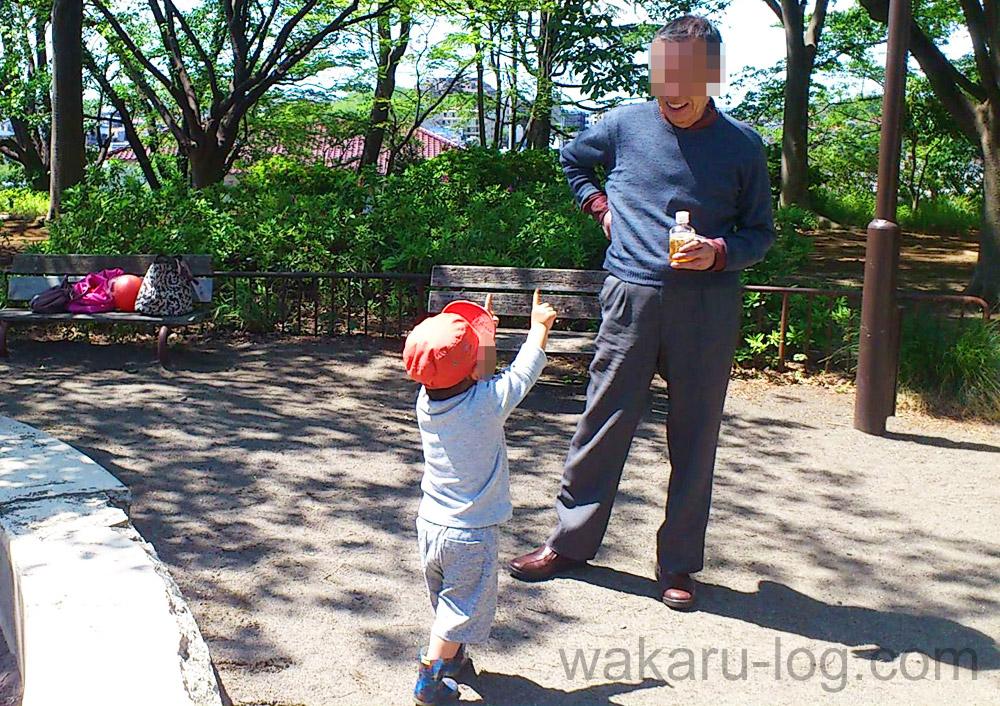 f:id:wakaru-web:20190906080232j:plain